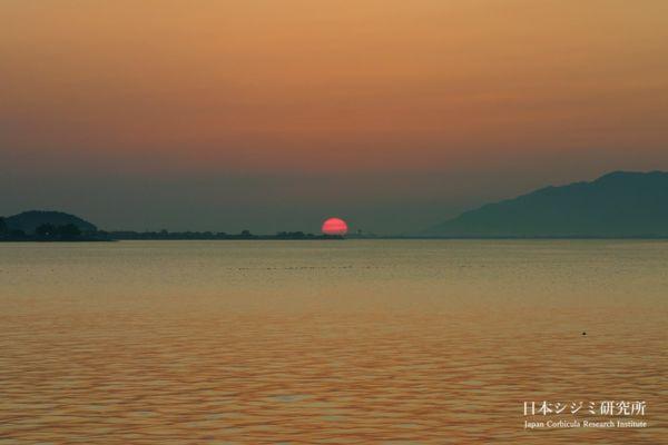 研究所から見える夕陽
